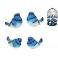 Blue Fairy Wrens & Metal Cage Display Pack